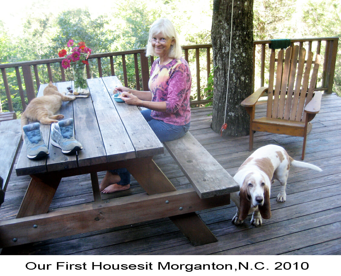 Betsy at picnic table with cat and dog